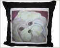 Sweet Coton Pillow